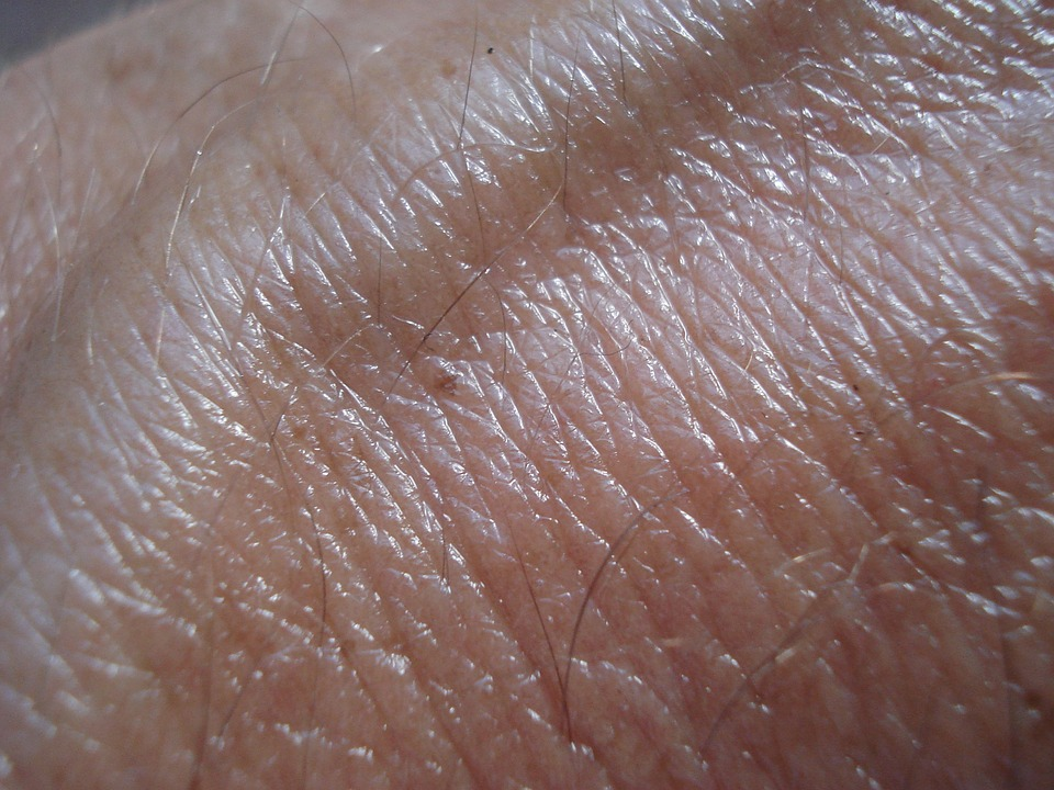 Closeup of Skin