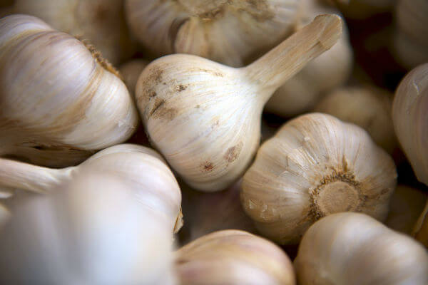 Can Garlic Prevent Cancer