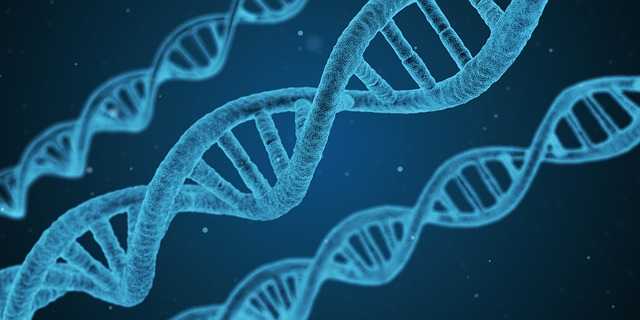 Genetic Disorders That Increase Cancer Risks (Part I)