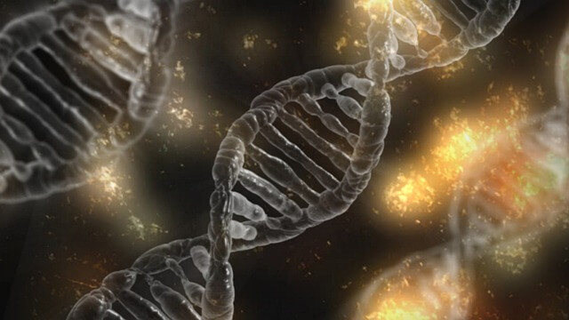 Genes Plays a Role in Chances of Getting Cancer - NHMC