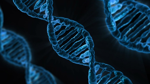 Genetic Disorders That Increase Cancer Risks (Part II)